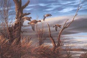 ducks flying over rural landscape in fall